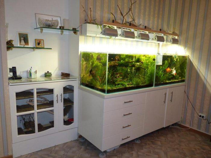 тумба аквариум