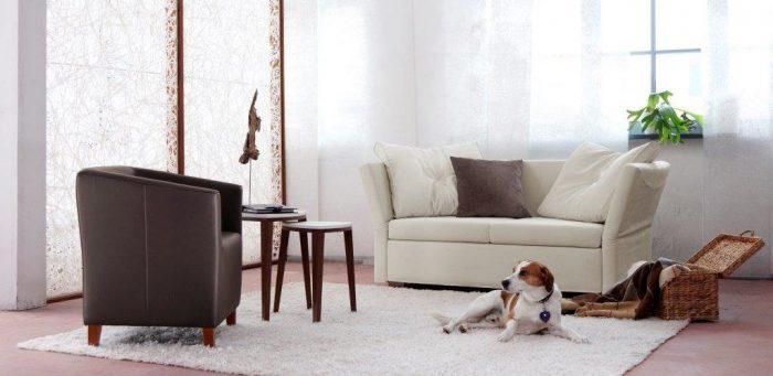 как правильно выбрать диван кровать
